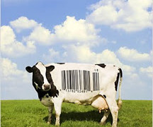 On The Couch #7: Food Inc.